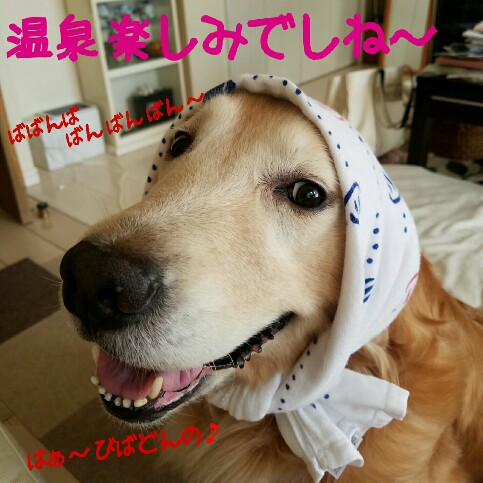 2017-09-11_08.21.48-483x483.jpg